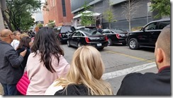 TIFF crowds hoping to see a celebrity