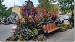 flowers with bench