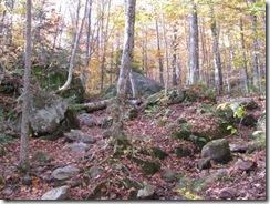 Kill 5 - Pico Peak Trail (4)