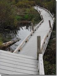 Kill 8 - Thundering Falls Boardwalk