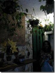 Favela Flowers-10