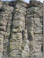 Devil's Tower columns