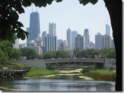 Lincoln Pk-Downtown View (2)