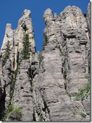 pinacles - trail (9)