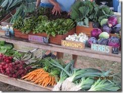 W Tisbury Farmers Market Produce - g (2)
