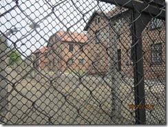 Auschwitz camp-fence