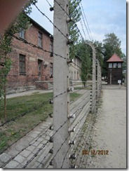 Auschwitz elec fence