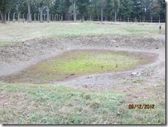 Birkenau water hole