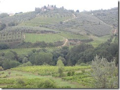 Tuscan landscape-GREAT