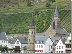 Mosel-town-vineyard (2)
