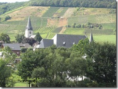 Mosel--town-vineyards.g