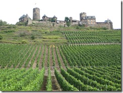 Mosel-vineyard to castle-g (2)