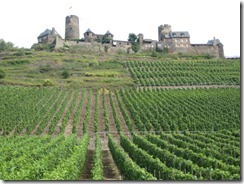 Mosel-vineyard-to-castle-g-2_thumb1