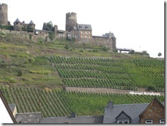Mosel-vineyard to castle-g