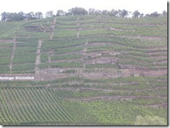 Mosel-vineyards w sign