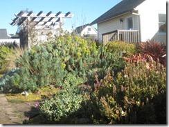 Mendo garden