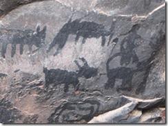 Palatki glyph-animals-vg