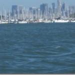 kayak-boats-SF skyline