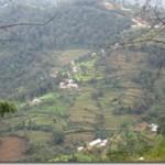 view on trek 3 vg