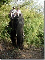 Joyce and Tom on elephant 4