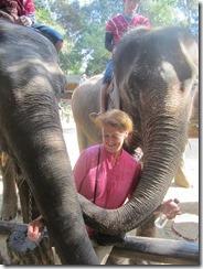 Joyce and elephants