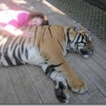 Joyce sleep with tiger