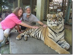 Tom and Joyce with tiger x