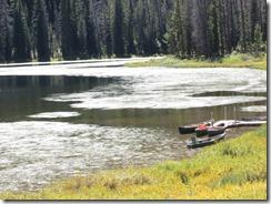 lake-weeds-g (3)