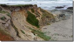 MacKerricher-dune