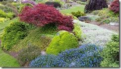 Mendo-Garden-garden-g