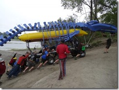 River-whale-push up hill (2)