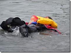 water-swimmer (2)