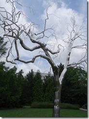 Nat Gallery-Sculpture Garden-tree