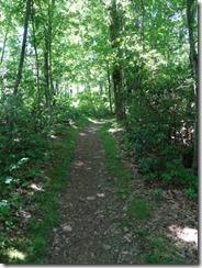 Shenendoah-trail