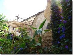 garden restaurant 03