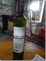 Olive Oil Museum and Velha Geracao winery 01