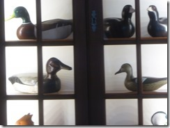 duck decoy 02