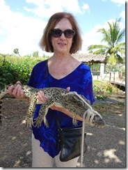 Joyce with crocodile