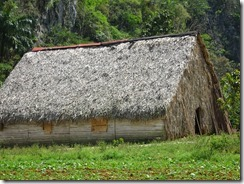 Vinales tobacco drying building