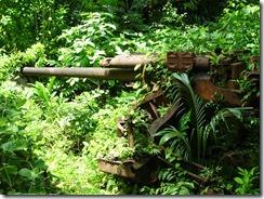 Etton Island gun 03