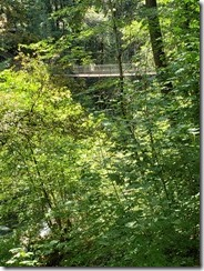 Niesenan Tribute Bridge
