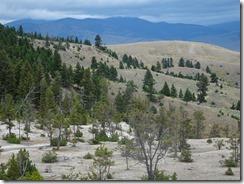 Yellowstone Mammogh Hot Springs 05