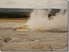 Yellowstone lower basin