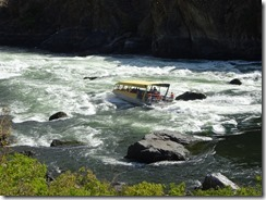 jet boat going through rapids