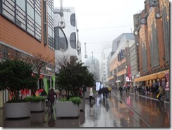The Hague - Main Shopping Street