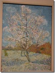 Amsterdam - Van Gogh Museum - orchard