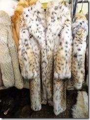 Sitka Alaskan Surpreme American Cat Lynx Fur Coat from Fur Gallery a mere $65,000