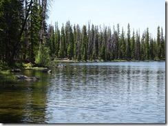 Weller Lake Trail (9)
