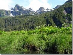 grassy bay at bottom of Mt Radmaker 02